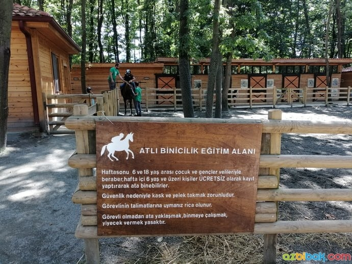 Ormanya At Biniciliği Uyarıları