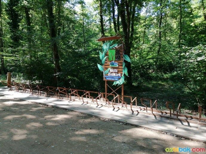 Ormanya Kobis Bisiklet Ünitesi