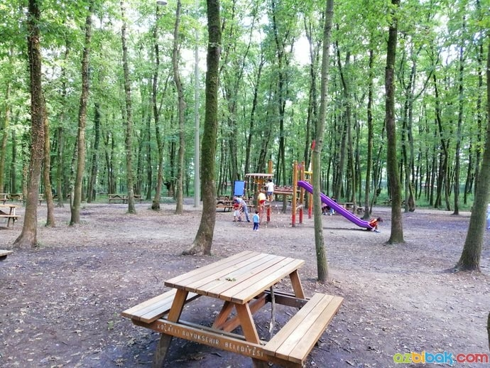 Ormanya Piknik Alanı ve Çocuk Parkı